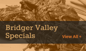 Bridger Valley Specials
